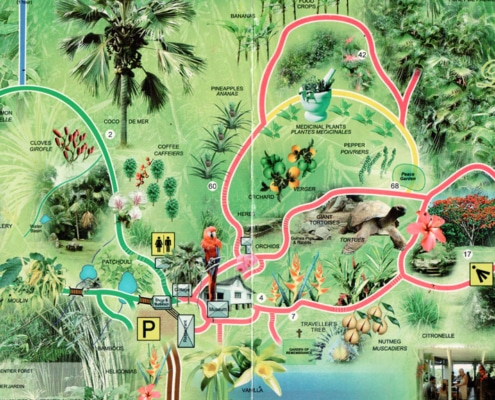 Le jardin du roi seychelles, Spicegarden
