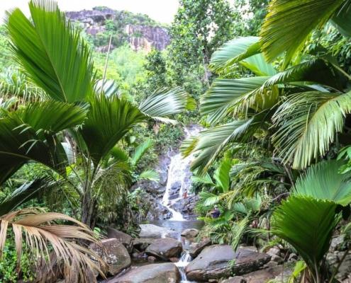 Sauzier vattenfall Seychellerna