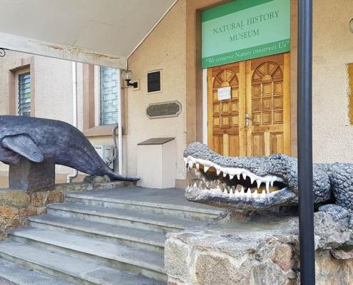 Naturhistorisches Museum Seychellen Aktivitäten