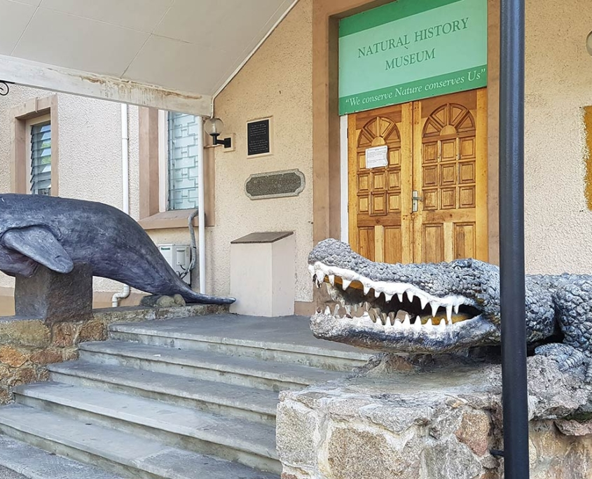 Natural History Museum Seychelles