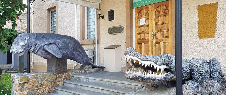 Natural History Museum Seychelles activities