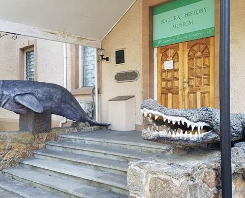 Activités du Musée d'histoire naturelle des Seychelles