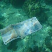 Seychellen Rupie, entrance fees